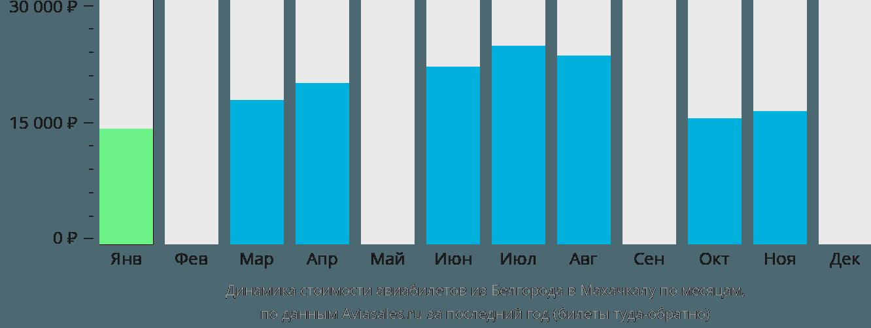 Динамика стоимости авиабилетов из Белгорода в Махачкалу по месяцам