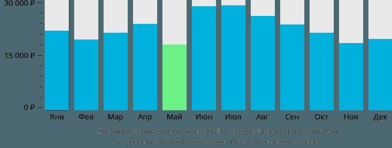 Динамика стоимости авиабилетов из Белгорода в Новосибирск по месяцам