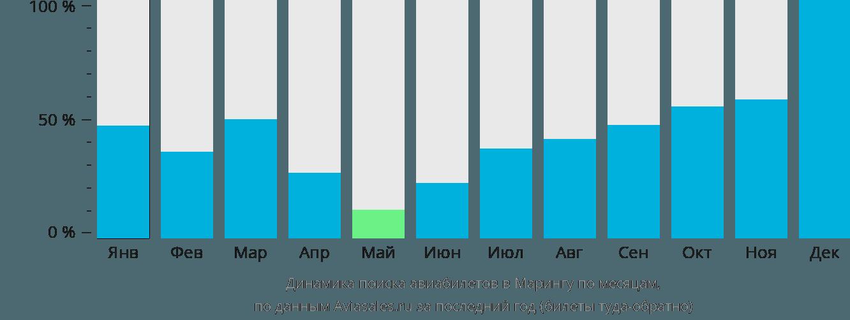 Динамика поиска авиабилетов в Марингу по месяцам