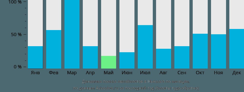 Динамика поиска авиабилетов Ньюкасл по месяцам